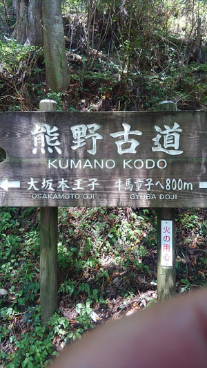 Kimg0360